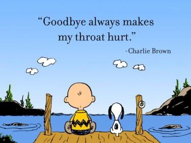 foto-charlie-brown-y-snoopy_goodbye_9buz-com